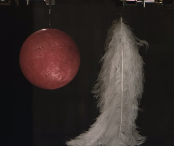 Which Falls Faster – A Feather or a Bowling Ball?