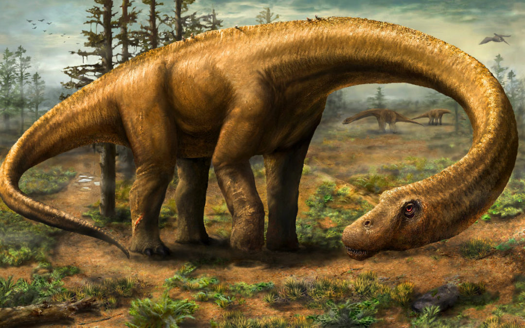 Bigger than Brontasaurus – Dreadnoughtus!