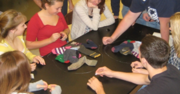 Student Activity: Sock Mitosis