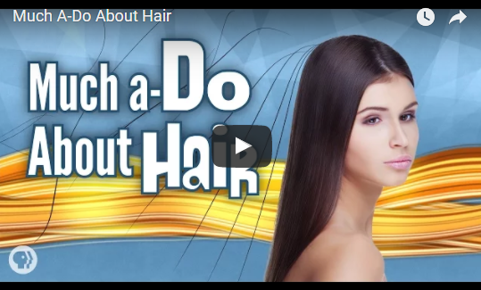 Much A-Do About Hair