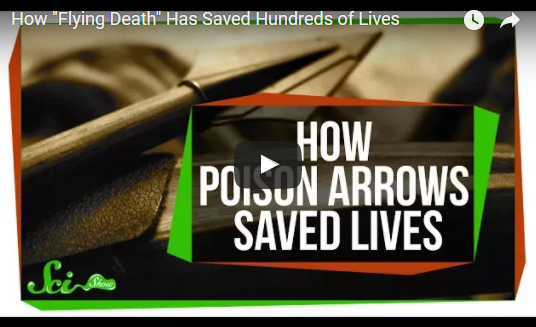 "How ""Flying Death"" Has Saved Hundreds of Lives"