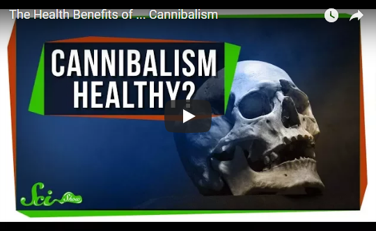 The Health Benefits of … Cannibalism