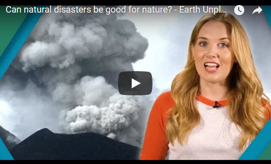 Can natural disasters be good for nature? – Earth Unplugged