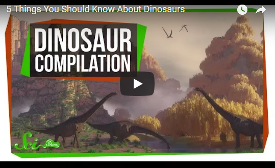 5 Things You Should Know About Dinosaurs