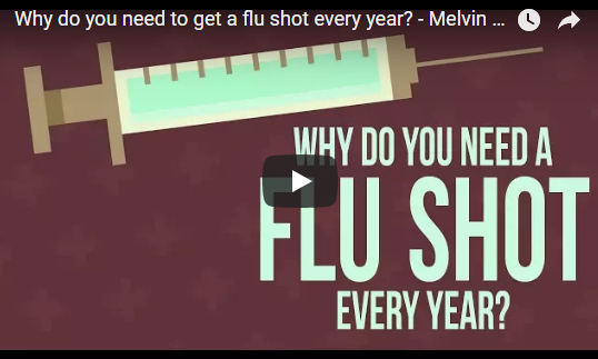 Why do you need to get a flu shot every year? – TED-Ed