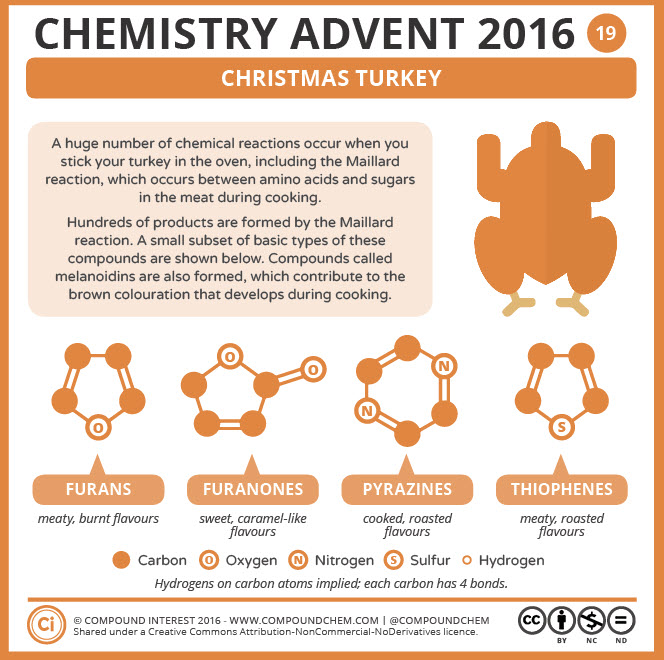 Christmas Turkey Chemistry