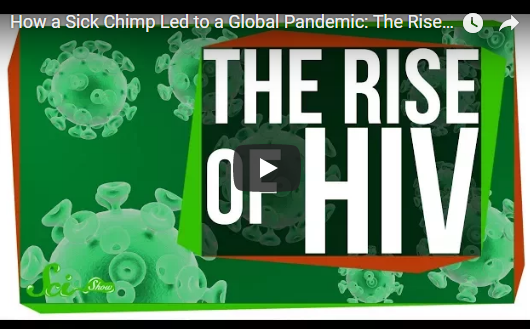 The Rise of HIV