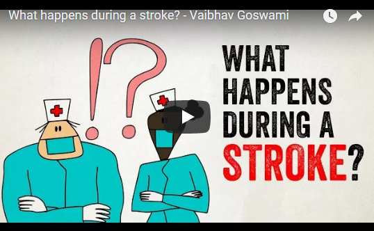 What happens during a stroke? – Vaibhav Goswami, TED-Ed