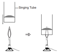 Singing Tube Demonstration – Flinn Scientific Canada