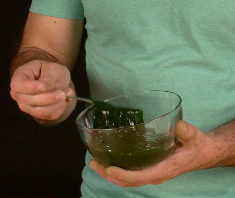 Edible Slime | Science Experiments | Steve Spangler Science
