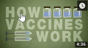 How do vaccines work? – TED-Ed