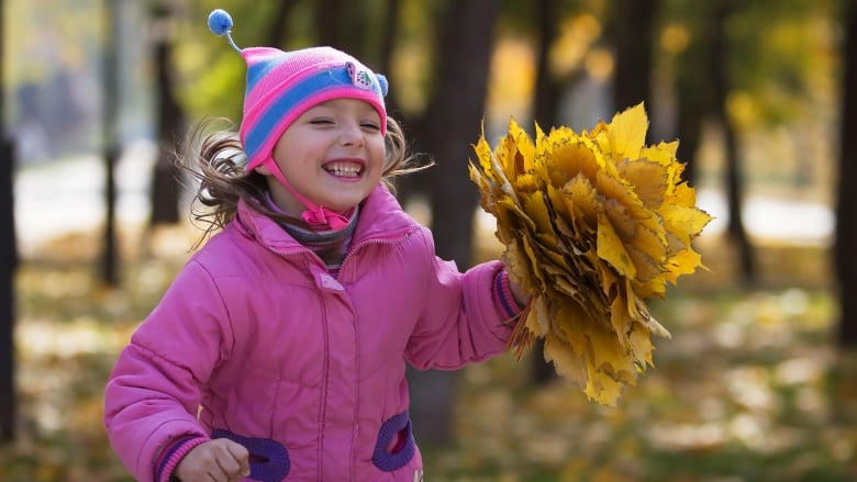 Why you might not want to rake your leaves this fall | CBC News