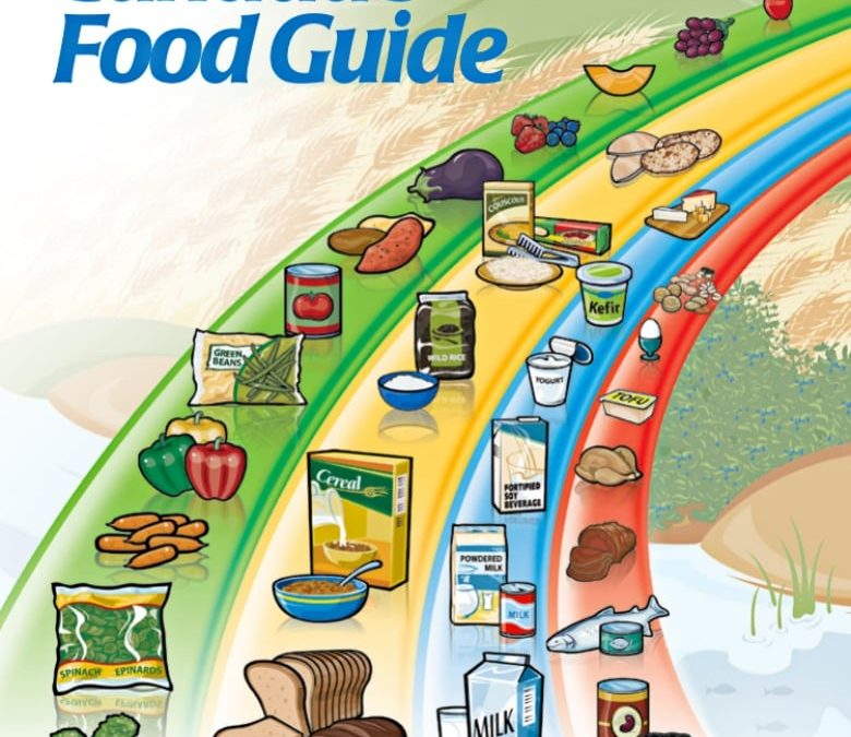 Here's what food guides look like around the world | CBC News