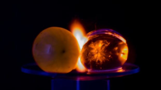 Why microwaving grapes creates a dazzling plasma light show | CBC News