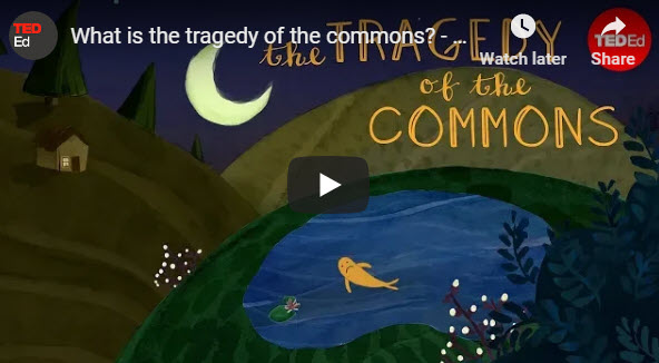 What is the tragedy of the commons? – Nicholas Amendolare – TED Ed