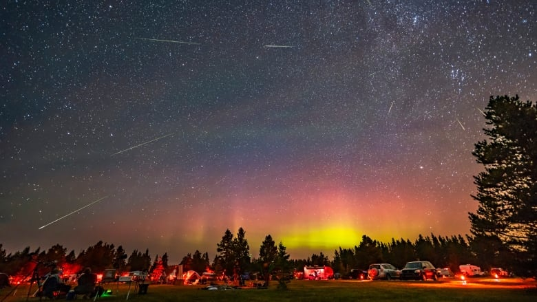 Eyes to the sky for one of the best meteor showers of the year, the Perseids | CBC News
