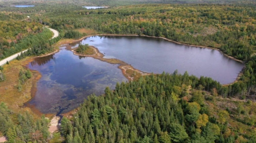 Why Nova Scotia wants to poison a lake to kill off invasive species – CBC News