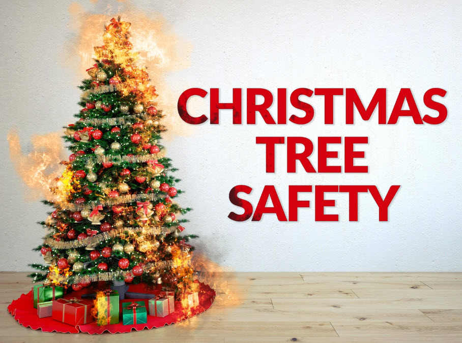 christmas tree safety steve spangler