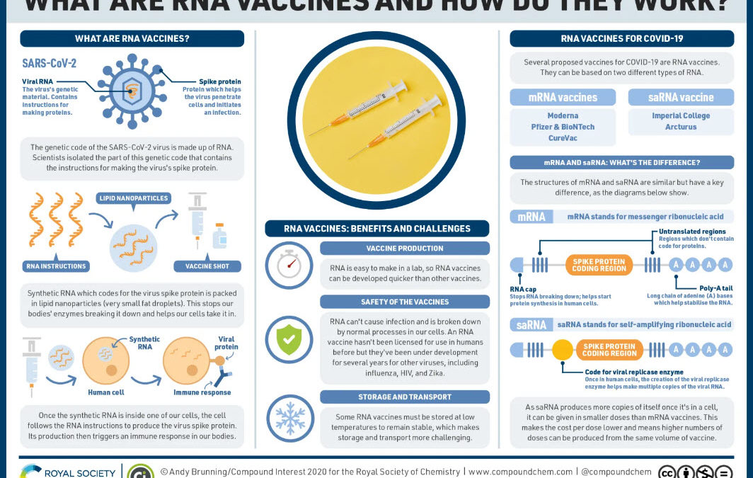 What are the COVID-19 RNA vaccines and how do they work?