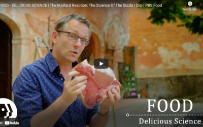 FOOD – DELICIOUS SCIENCE | The Maillard Reaction: The Science Of The Sizzle | Clip | PBS Food