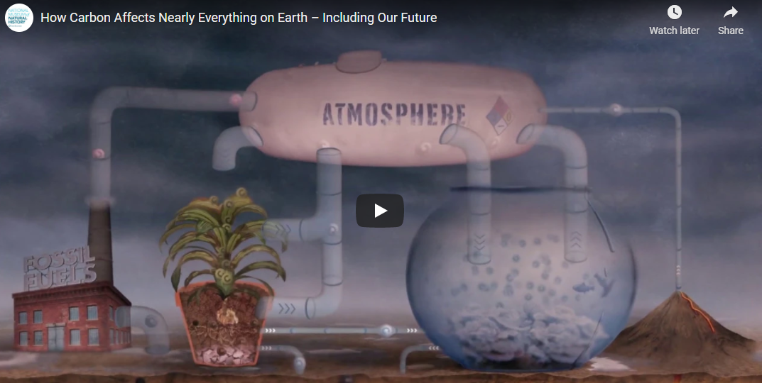 How Carbon Affects Nearly Everything on Earth – Including Our Future – Smithsonian Museum of Natural History