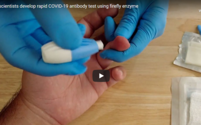 Canadian scientists develop rapid COVID-19 antibody test using firefly enzyme – CBC News, submitted by Kris Lee
